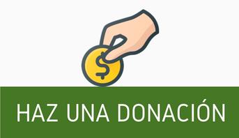 REALIZAR DONACION POR PAYPAL
