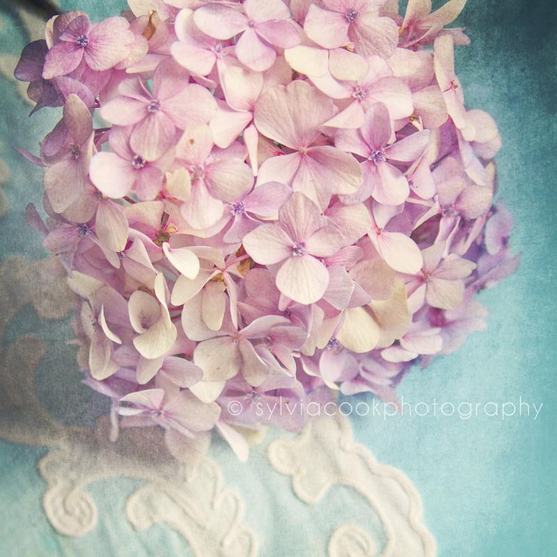 hydrangeas-vintage-texture