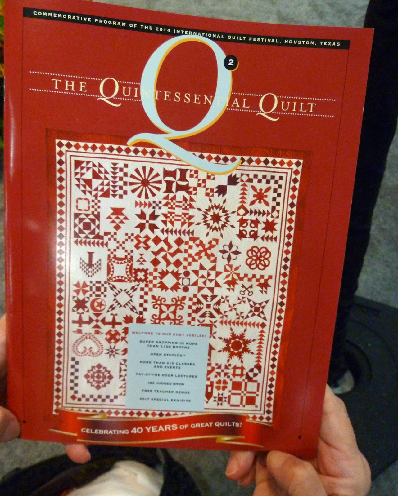 Come Quilt (Sue Garman): The Quilts and Houston - and more : houston quilt show 2014 - Adamdwight.com