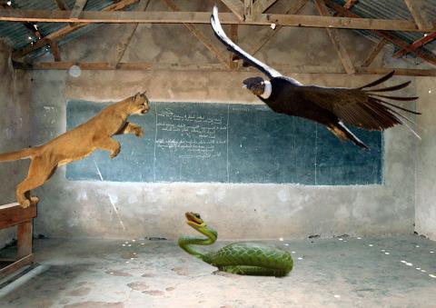3ª etapa verfractal padre hijo espiritu santo serpiente puma condor un curso de milagros bioneuroemocion neuroemocion psicomagia enric corbera