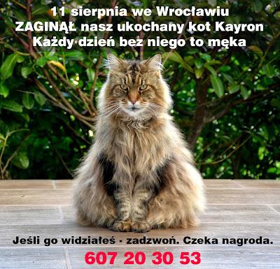http://zamoimidrzwiami.blogspot.com/2014/08/zagina-kayron.html