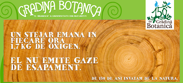 mesaj stejar gradina botanica bucuresti