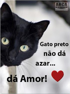Gato preto não dá azar; dá amor. Campanha da Arca Brasil
