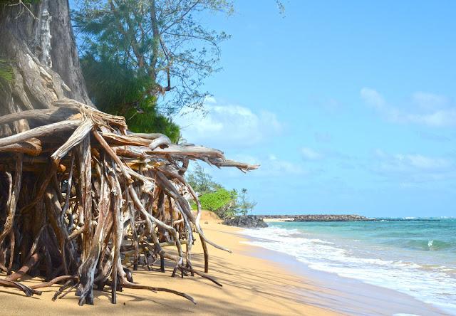 Kapaa, Kauai, Hawaï, USA