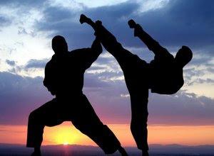 perbedaan-pencak-silat-karate-taekwondo.jpg