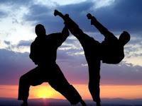 4 Perbedaan Pencak Silat, Karate, dan Taekwondo