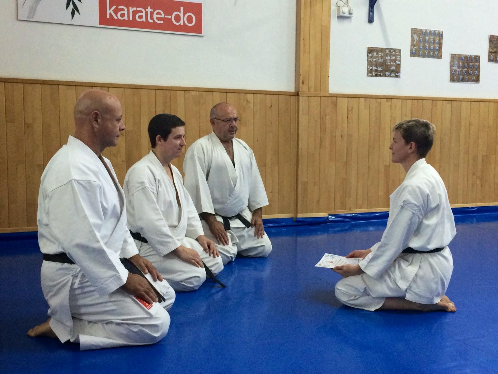 Fudoshin karate do shotokai alcal de guadaira sevilla - Artes marciales sevilla ...