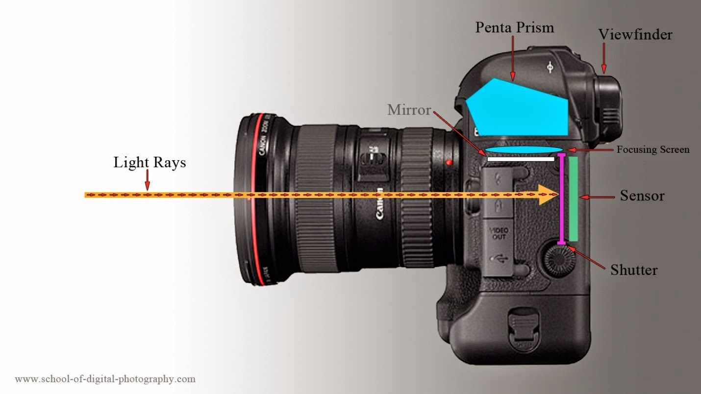 DSLR camera functioning