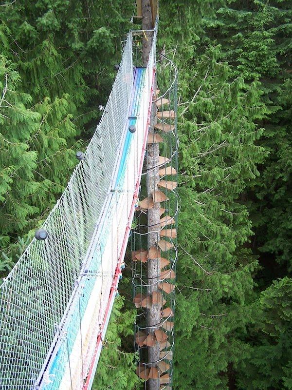 Top 10 Shaky Treehouses