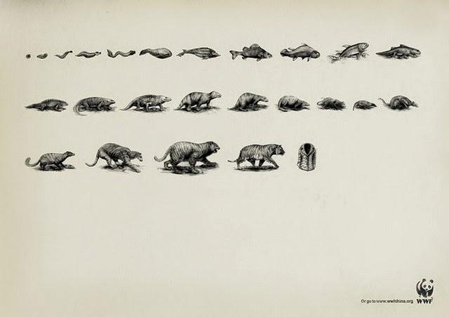 animal-advertising-5