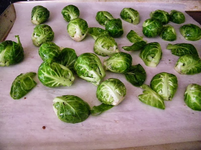 how to keep bugs off brussel sprouts