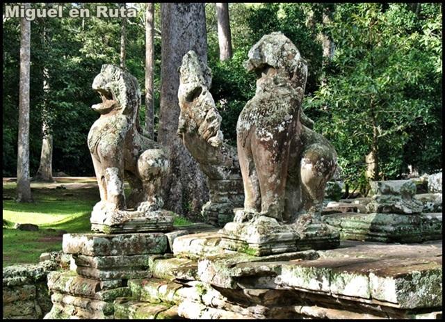 Templos-Angkor-Caras-Bayón_2