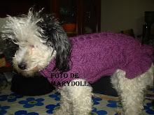 Capa de cão no ponto Argolas da Ti Maria