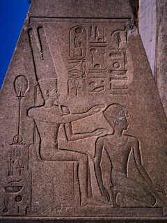 All the birds of punt: anointed with myrrh, they settle in Egypt.