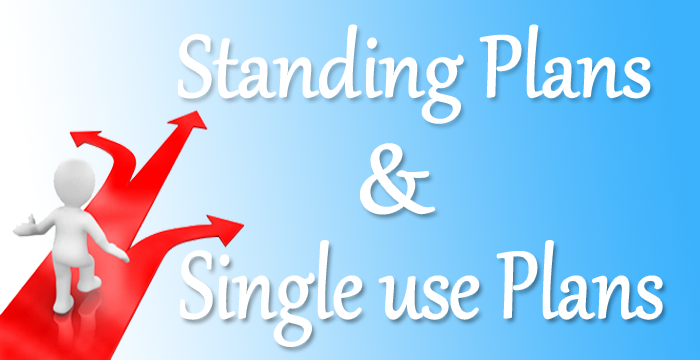 standing use and single use plan