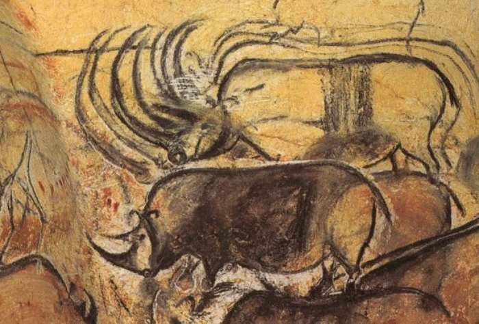 Images about rock art on pinterest cave painting