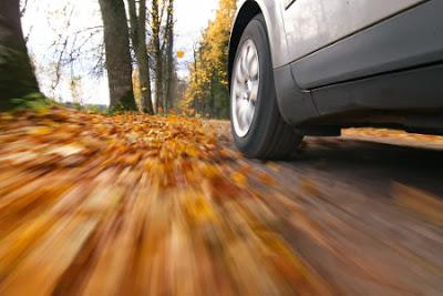 Jesień na drodze