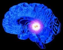 ¿Cómo activar la glándula pineal? ¡Prepárate para activar tu tercer ojo!