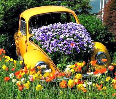 Jardins, jardins em carros