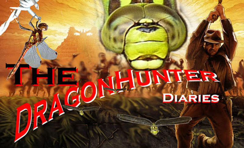 The dragonhunter diaries