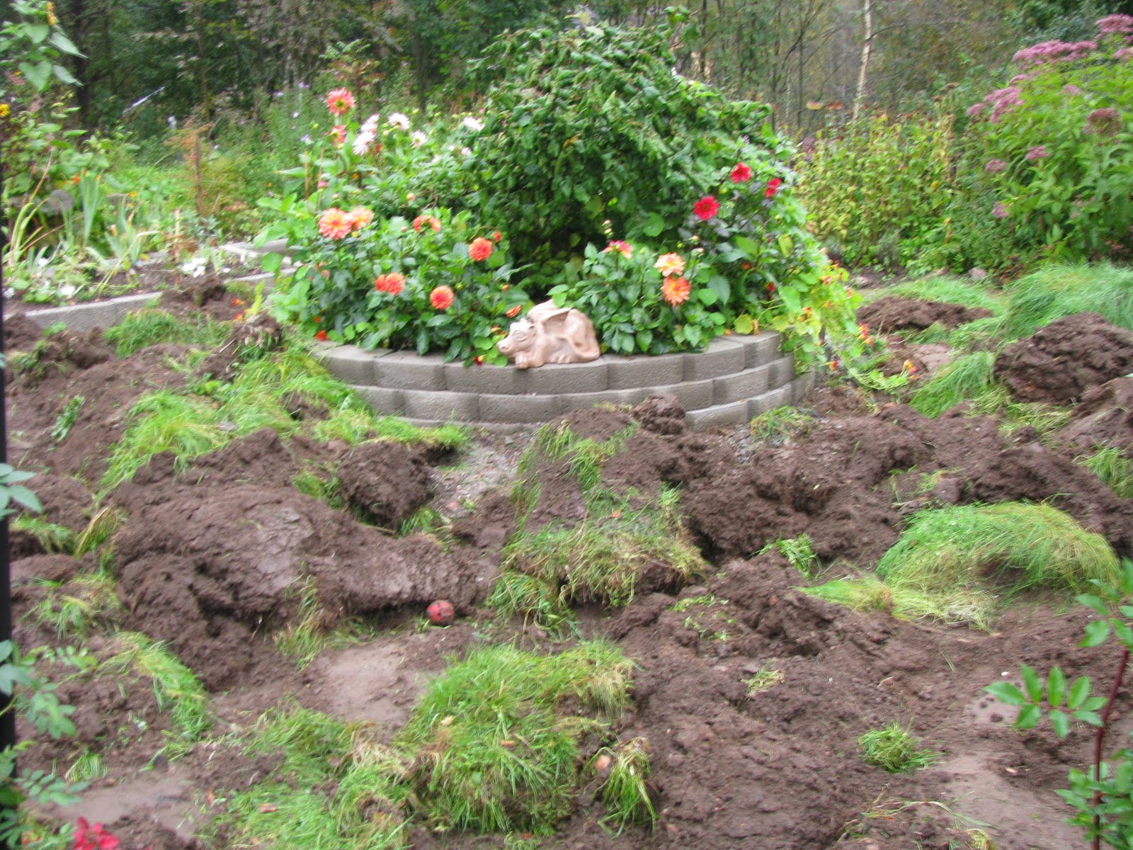 Trädgård Grus : Margits trädgård jord lera och grus