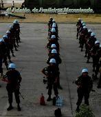 4º Pelotão de Fuzileiros  Mecanizado