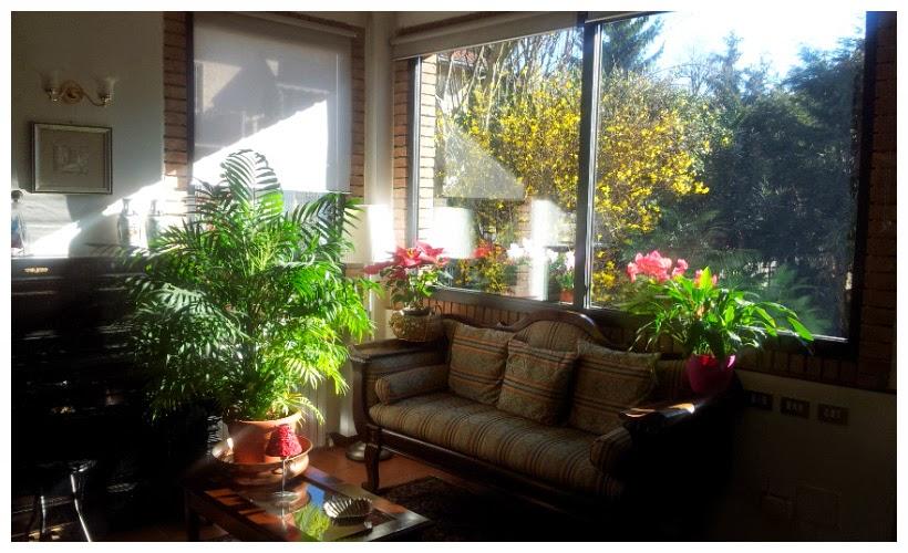 Psergio it oggi ore il sole in casa - Arte casa cernusco ...