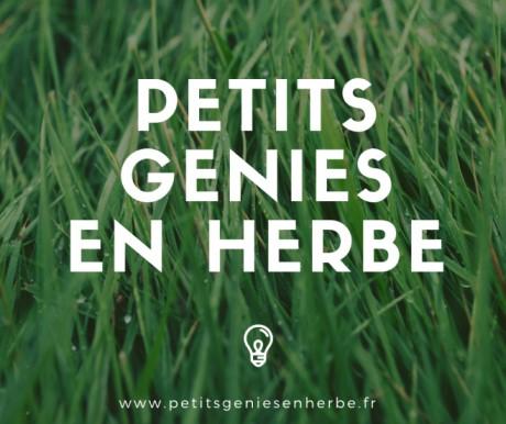 Petits génies en herbe