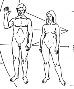 NASA-Pioneer Plaque