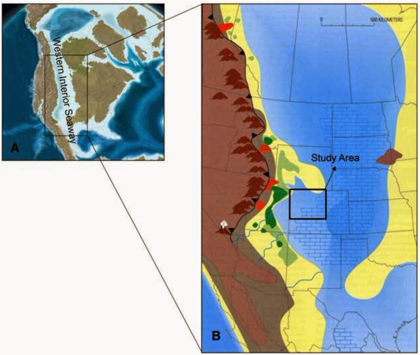 Paleoenvironmental Analysis Of The Cretaceous Western Interior Seaway In  Colorado