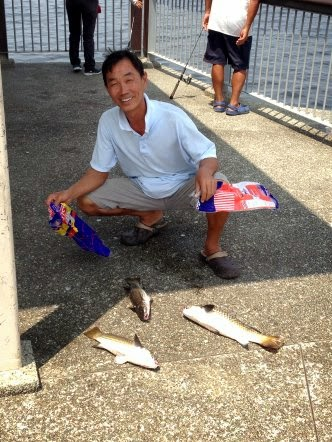 Mullet or Chow Orh [ 草乌 ] or Belanak x3 Caught by Ah Wong weighing 1 kg plus at Woodland Jetty on 13th March 2014