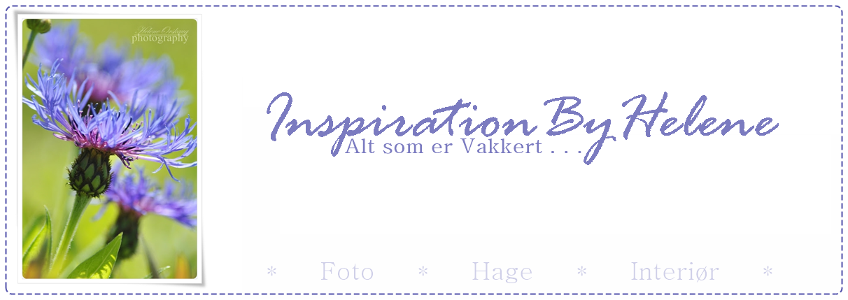 Inspiration By Helene