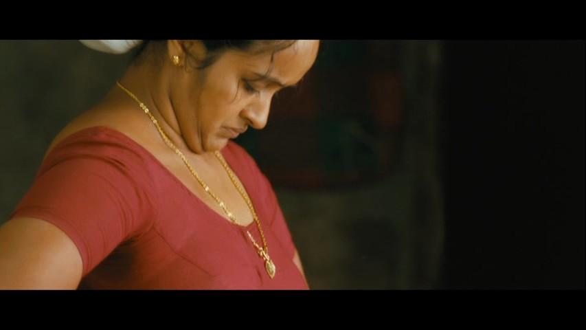 Serial actress Shalu Menon hot show in saree