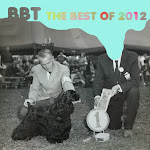 BBT Best of  2012 (100 tracks)