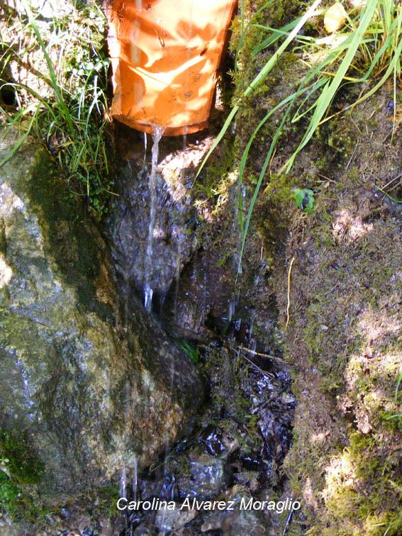 Manantial Natural del Urederra
