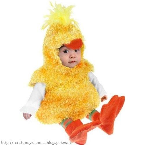 Baby Chicken.