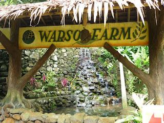 Kebun Durian Warso