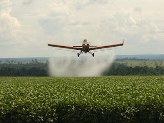 Brasileiros consomem cerca de 5KG de agrotóxicos por ano