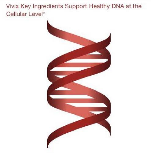 vivix membantu membaiki sel