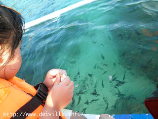 Best Things to Do in Puerto Galera 23