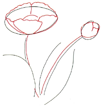 Cartoon pictures how to draw a poppy in 5 steps for Poppy drawing step by step