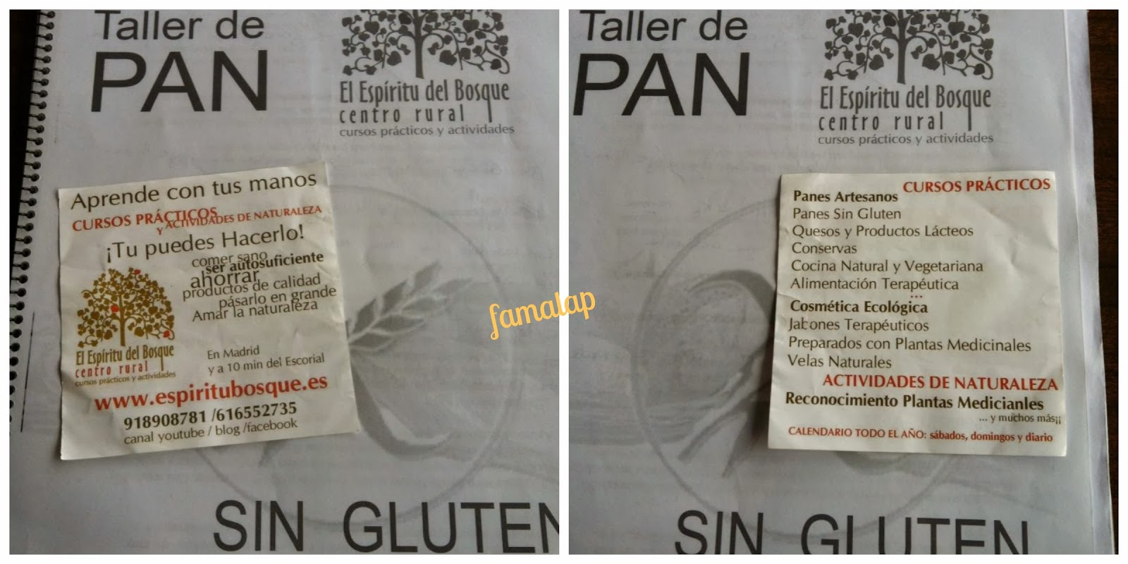 Cocina f cil sin gluten talleres de panes y reposter a - Cocina facil sin gluten ...