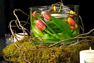 Arreglos Florales, Toda Ocasión