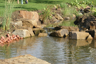 Natural looking water feature in a garden in Huntingdon Cambridgeshire