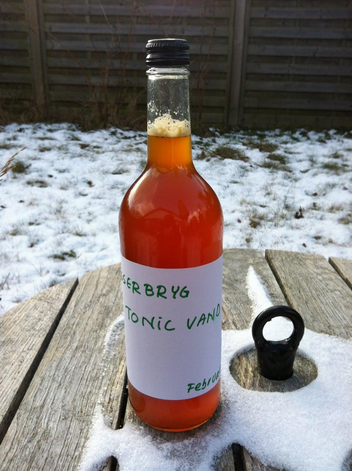 hjemmelavet sodavand opskrift