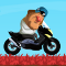 Gerard Scooter game
