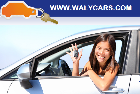 Waly cars alquiler de coches Torrevieja/Alicante