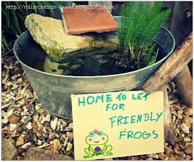 Our mini pond #homesfornature RSPB