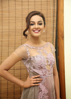 Actress Seerat Kapoor Pictures in Long Dress at Tiger Audio Launch  89