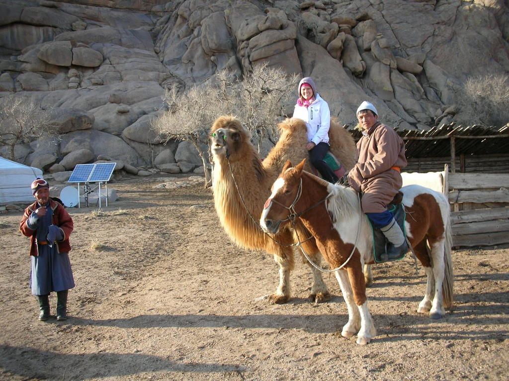 Opportunity To Ride One Of These Massive Beasts While Staying With A Mongolian Family Who Lived Happily In The Desert Ill Call Her Alice Camel